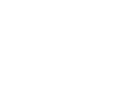 David Ford Logo